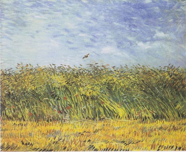Van Gogh Wheat Field Lark