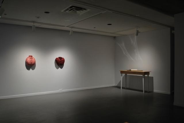 anatomica hearts
