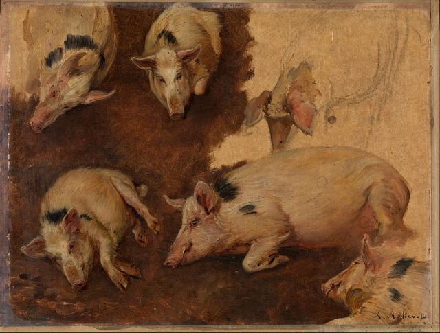 "Anders Askevold, ""Study of six Pigs"" (1900)"