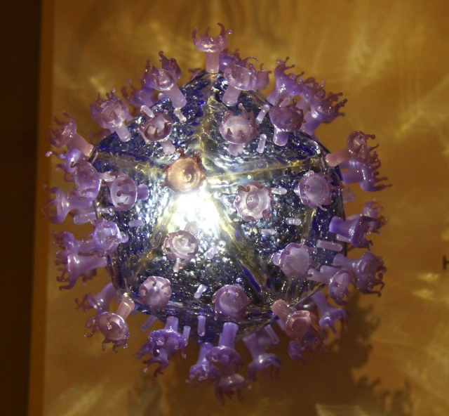 Model of HIV virus - Smithsonian Museum of Natural History (Photo Credit: Tim Evanson, 2012)